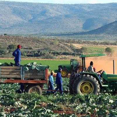 National Minimum Wage: Unhappiness about increase for farmworkers