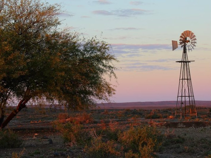 Panel supports land expropriation plans