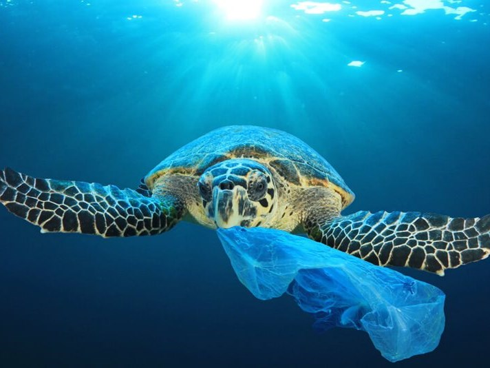 Secure our oceans, before it's too late
