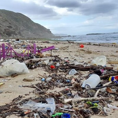 Blemish of pollution: from river to beach