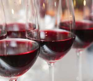 Festival of Wines brings winelands to bay