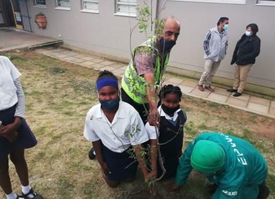 Hessequa plant bome