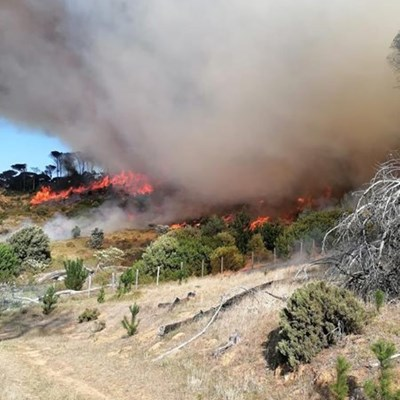 Hikers evacuated after fire