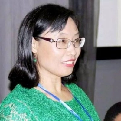 All you need to know about the ANC's new Chinese-born MP