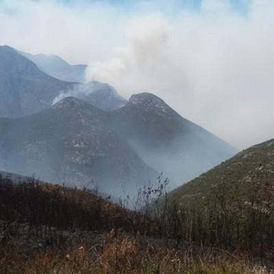 Update: Veldfire on Outeniqua mountain