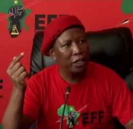 Malema told us Mpofu could be Zuma's lawyer in future