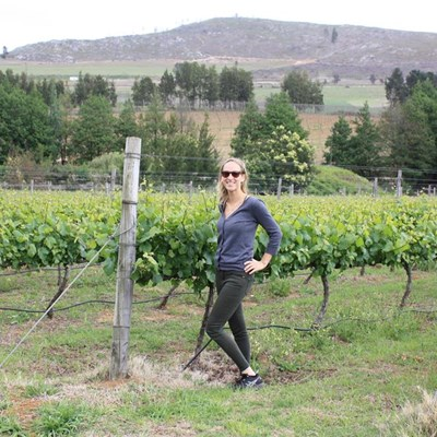 Houtbosch Wines & Craft Beer - The taste of the Outeniqua