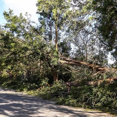 Extreme weather causes damage