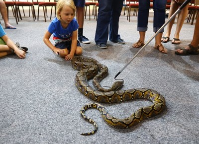 Snake talk at George Museum