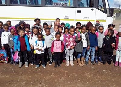 Kleine Pikkewyne kuier op Mierfonteinplaas