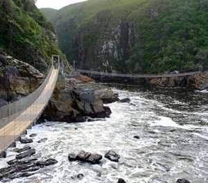 Best Outdoor Activities in Storms River & Tsitsikamma Forest