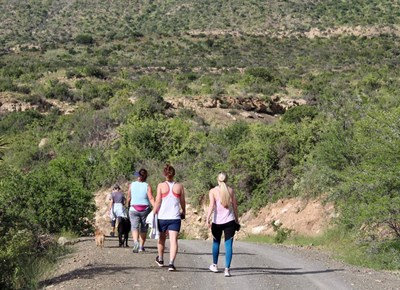 Mountain Drive parkrunners take on the heat