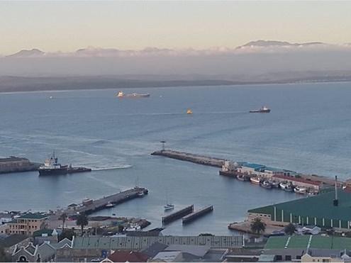 Port Festival to take place November