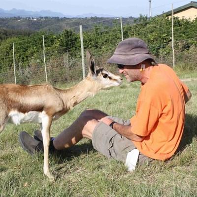 Bababokkie leef danksy rehabilitasie