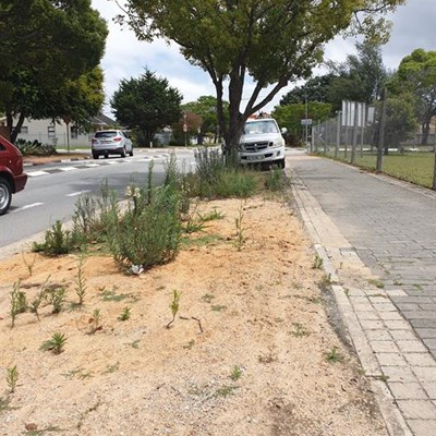 Residents call for 'operation clean-up'