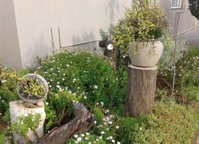 Blomme, plante, kom vier Tuindag saam met ons!