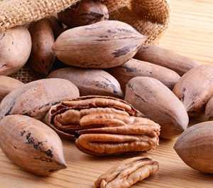 Farming with pecan nuts: Preparation needed
