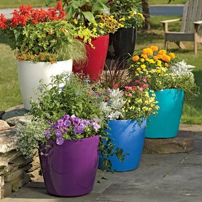 Use planter colour to optimise growth