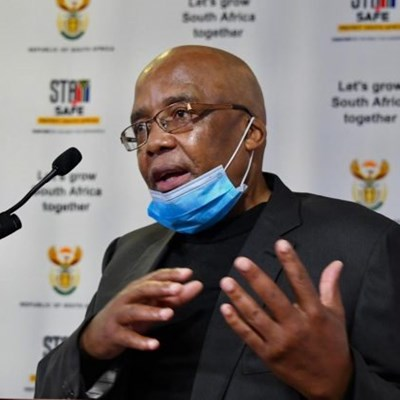 Parliament summons Motsoaledi to explain Bushiris' escape