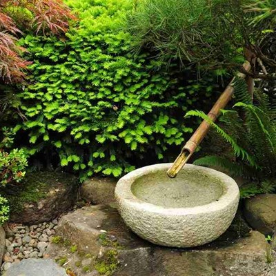 Create your own Zen garden