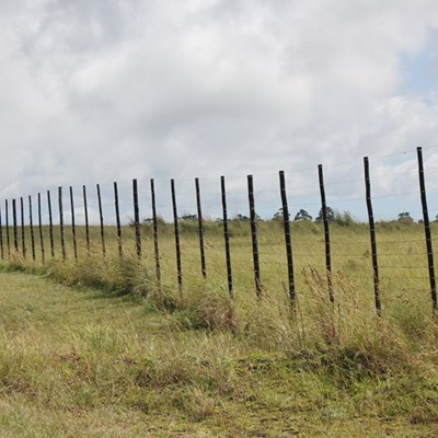 Fire-resistant droppers for SA farmers