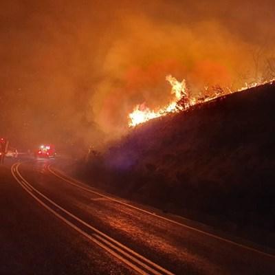 Vegetation fire extinguished