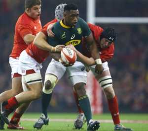 Kolisi back, but Brits skippers Springboks in World Cup warm-up