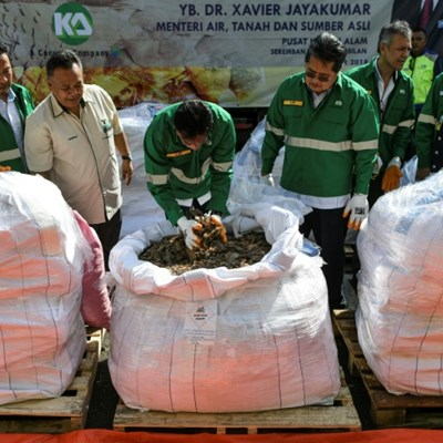 Malaysia torches 2.8 tonnes of African pangolin scales