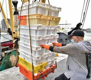 Brexit waves threaten to wreck Belgian fishing