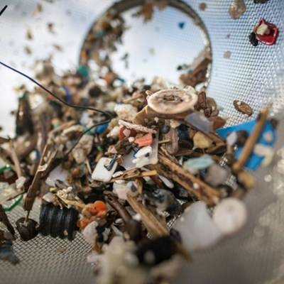 Humans consume 'tens of thousands' of plastic pieces each year