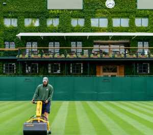 Wimbledon head groundsman says grass will be greener next year