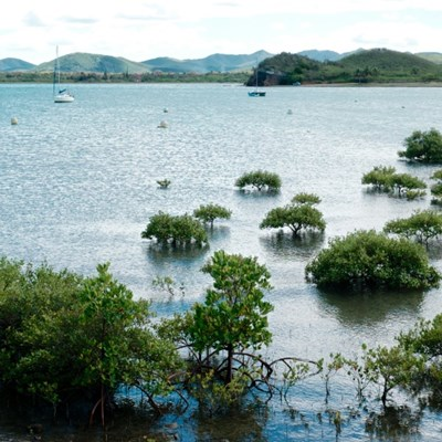 Virus reaches previously Covid-free New Caledonia