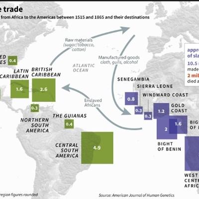 Dark history of transatlantic slavery traced through DNA study