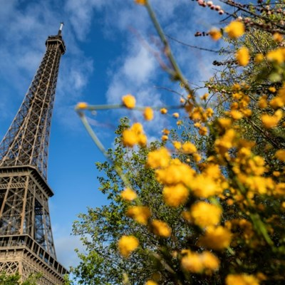American picked to design vast car-free garden at Eiffel Tower