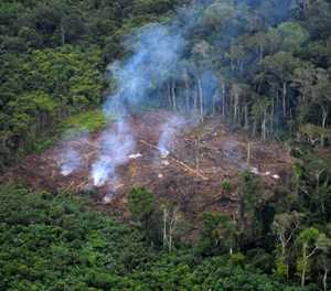 Earth's 'vital signs' worsening as humanity's impact deepens