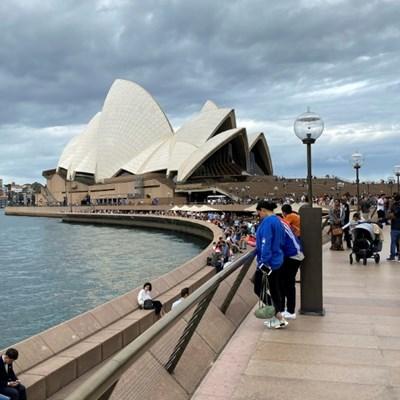 Australia police to probe cruise ship virus deaths