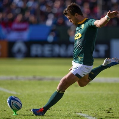 Springboks, Pumas poles apart ahead of World Cup warm-up