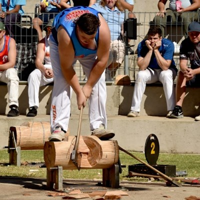 Axe marks the sport as wood-chopping booms in Australia