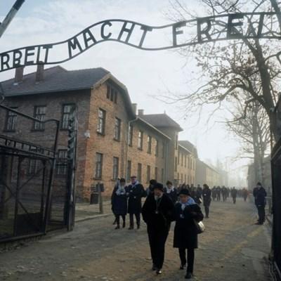 Auschwitz online: raising Holocaust awareness in the digital age