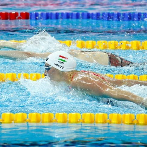 FINA to stage $3.9 mn elite 'swim series' after criticism