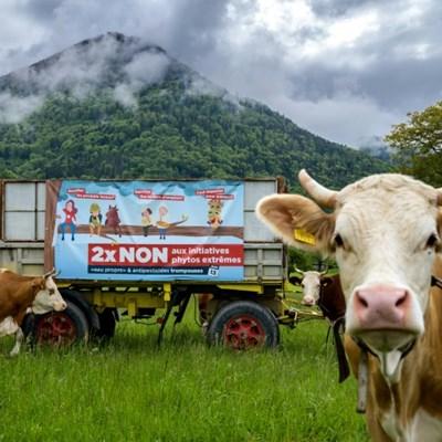 Switzerland votes on pesticides ban