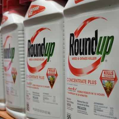 'Round Up' pesticide cancer link on trial