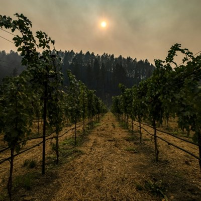California wine country faces long battle as fire explodes