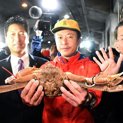 Japan crab fetches record $46,000 at auction