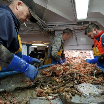 UK fishermen angling for big catch post Brexit