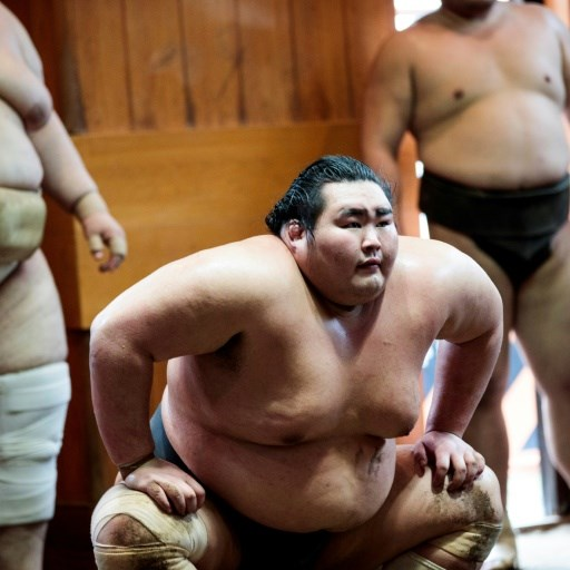 Five key facts about sumo, a sport like no other