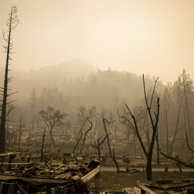 Fire damage to US wine region laid bare as latest death confirmed