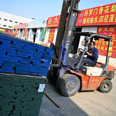 Touch wood: US trade war leaves China importers struggling