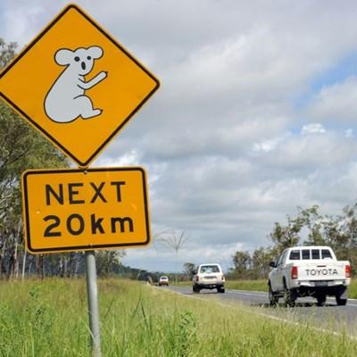 Aussie kids take stolen car on 1,000-kilometre road trip