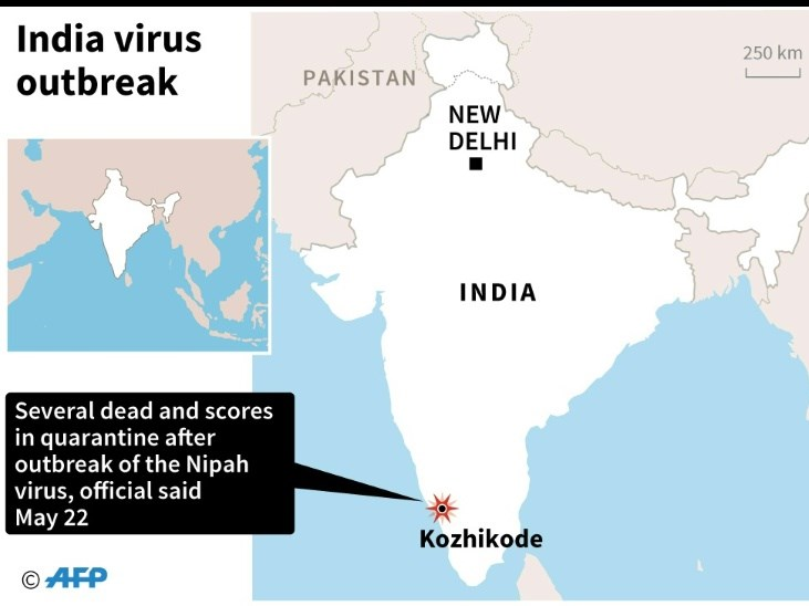 5 Dead in India from Nipah virus